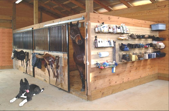 Horse Tack Rooms on Pinterest | Tack Rooms, Tack and ...